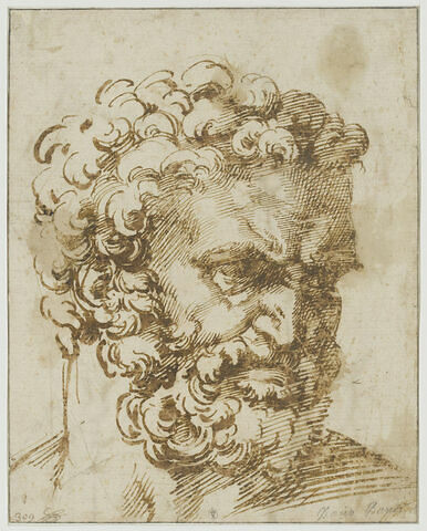 Tête d'homme barbu, vu de trois quarts, tourné vers la droite : Hercule