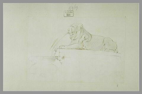 Une fontaine avec un lion crachant de l'eau dans une vasque