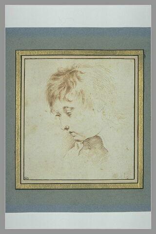 Tête de jeune homme, de profil à gauche, regardant vers le bas
