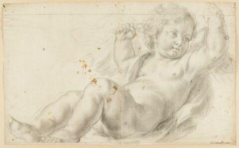 Un putto ou un angelot à demi-couché et tenant des rênes