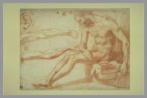 Etude pour un Christ mort, études d'une oreille et de deux bras gauches