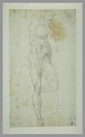 Etude d'homme nu, debout