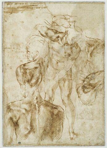 Homme creusant le sol ; torse de jeune homme de dos, la tête tournée vers la gauche et reprise de la torsion de sa  tête ; études de bras et d'épaule