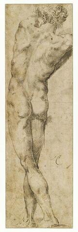 Homme nu, debout, vu de dos, les jambes croisées, les bras levés