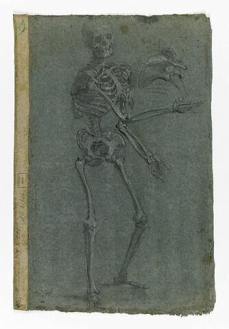Squelette debout, étendant les bras, et détail de la cage thoracique