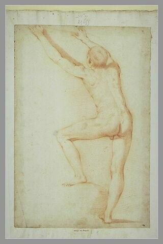 Homme nu, debout, de dos, la jambe gauche pliée