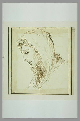 Tête de femme voilée, de profil à gauche