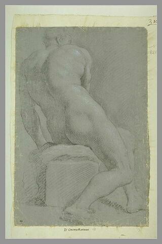 Homme nu, assis, vu par le dos, s'appuyant sur les mains