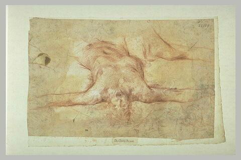Demi-figure d'homme nu, renversé sur le dos, les bras écartés ; reprise de l'articulation de l'épaule droite et croquis d'une autre figure dans una attitude analogue