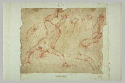Figure nue vue de dos, précipitant ; détails de bras, de jambes et de mains