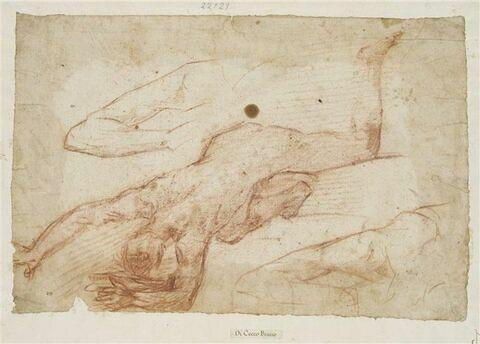 Figure nue vue de dos, tête en avant, jambes pliées, vue du dessus ; deux études de bras