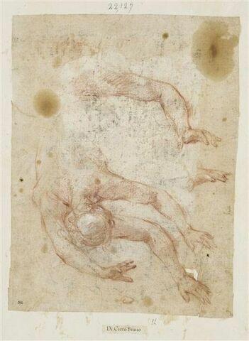 Demi-figure nue, tête en bas, précipitant ; détails de deux bras et d'une main