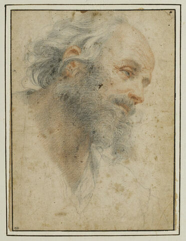Tête d'homme barbu, vue de trois quarts, tournée à droite