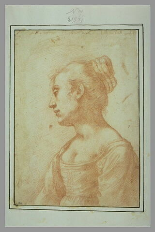 Buste de femme, vue de profil, tournée vers la gauche