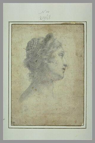 Tête de femme, de profil à droite