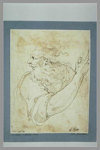 Homme âgé, barbu, vu en buste, de profil vers la gauche