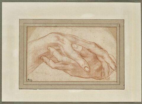 Etude de deux mains gauche jointes