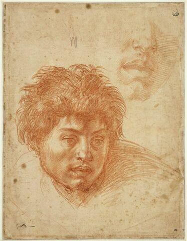Deux études de têtes de jeune homme, vue de face