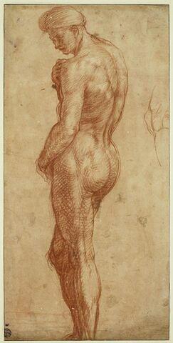 Homme nu debout et reprise du genou droit de la même figure