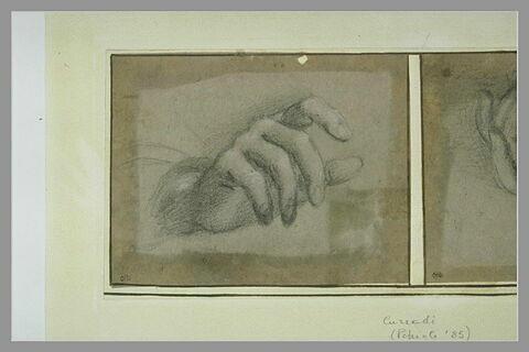 Une main à demi-fermée, vue de dessus