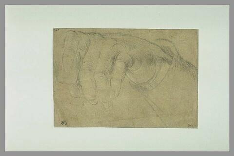 Etude d'une main à demi fermée, vue de dessus