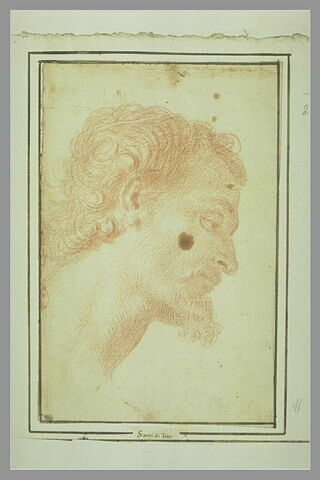 Tête d'homme barbu, de profil à droite, regardant en bas