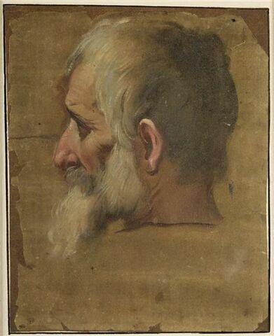 Tête d'homme barbu, de profil à gauche