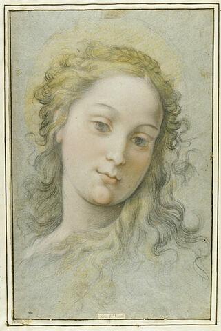 Tête de sainte, de face, aux cheveux blonds lâches, et nattés