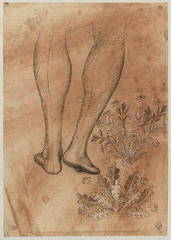 Jambes d'un personnage marchant, vues de derrière ; deux plantes