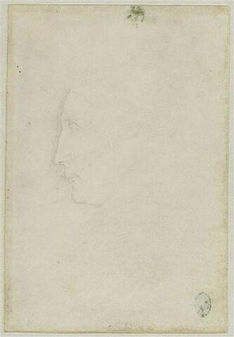 Tête de Borso d'Este, de profil vers la gauche