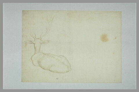 Deux cerfs, l'un couché, vu de dos, l'autre esquissé, debout, de profil