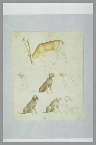 Cerf, de profil vers la gauche, broutant ; six études d'un chien assis