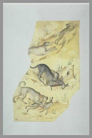 Trois chiens, tournés vers la droite, chassant le lapin et le lièvre