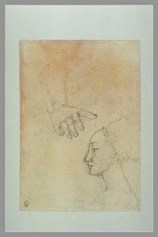Etude de bras ; une tête de jeune fille