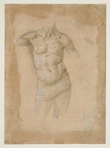 Buste d'homme à demi-nu, sans la tête