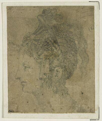 Tête de femme avec coiffure maniérée, vue de profil vers la gauche