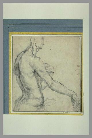 Buste d'homme nu, vu de profil, tourné vers la droite