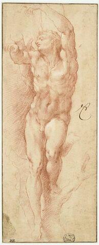 Homme nu attaché à un arbre : saint Sébastien ?