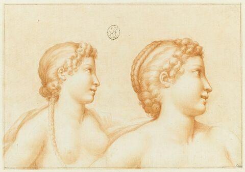 Etude de deux bustes de jeunes filles nues