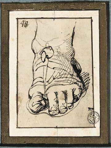 Etude d'un pied chaussé d'une sandale à l'antique