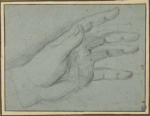 Main gauche ouverte