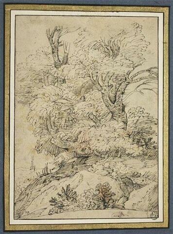 Gros plan sur un groupe d'arbustes avec une église dans le lointain