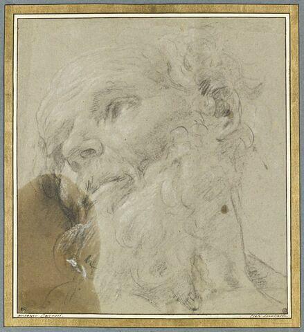 Tête de vieillard, regardant vers la gauche