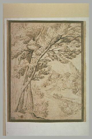 Paysage montagneux et boisé, avec un charriot montant à flanc de montagne