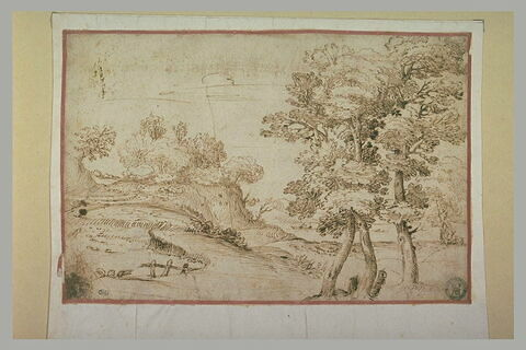 Paysage avec une rivière coulant derrière des arbres