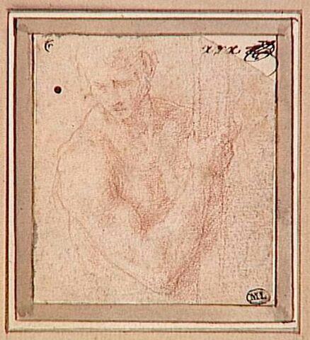 Homme nu, en buste, tenant un bâton, la tête de trois quarts vers la gauche