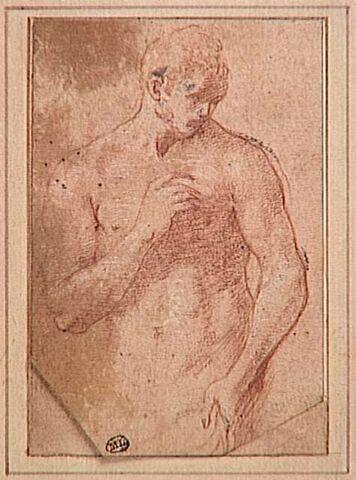 Homme nu, vu à mi-corps, la tête de trois quarts vers la  droite