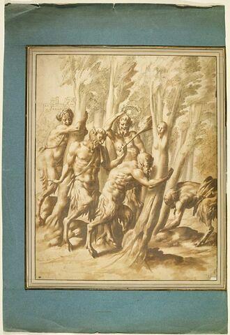 Des satyres poursuivant des nymphes se changeant en arbre