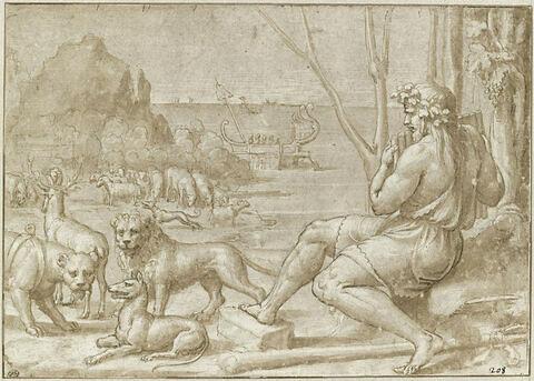 Polyphème assis charmant les animaux