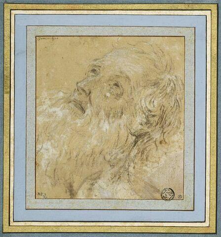 Tête de vieillard barbu, de profil vers la gauche, les yeux au ciel